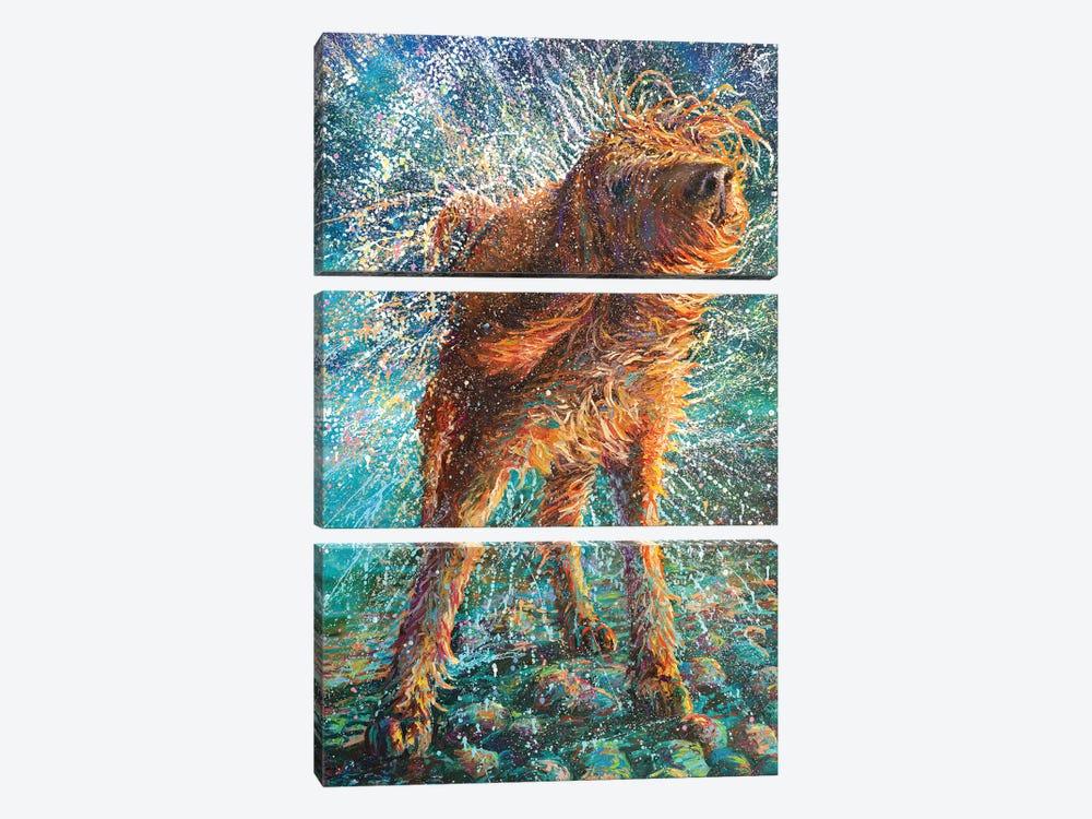 Beaded Threads by Iris Scott 3-piece Canvas Wall Art