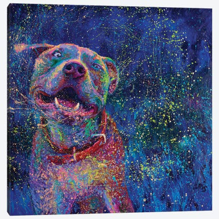 Blue Chakra Canvas Print #IRS209} by Iris Scott Canvas Wall Art