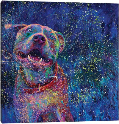 Blue Chakra Canvas Art Print
