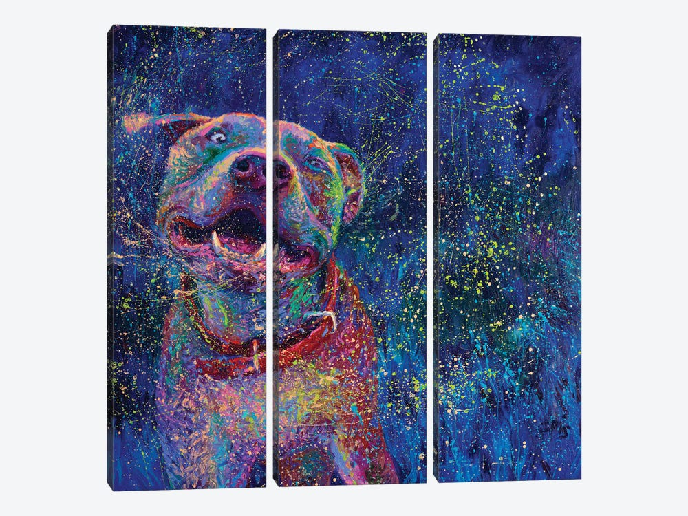 Blue Chakra by Iris Scott 3-piece Canvas Artwork