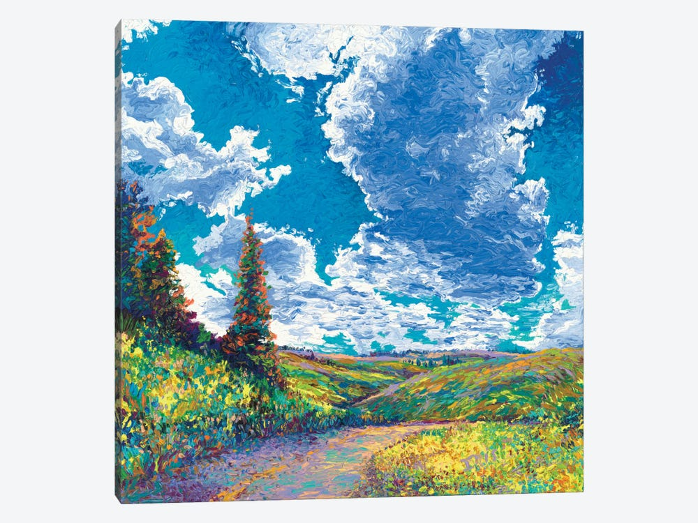 Edge of Canyon Road by Iris Scott 1-piece Canvas Art