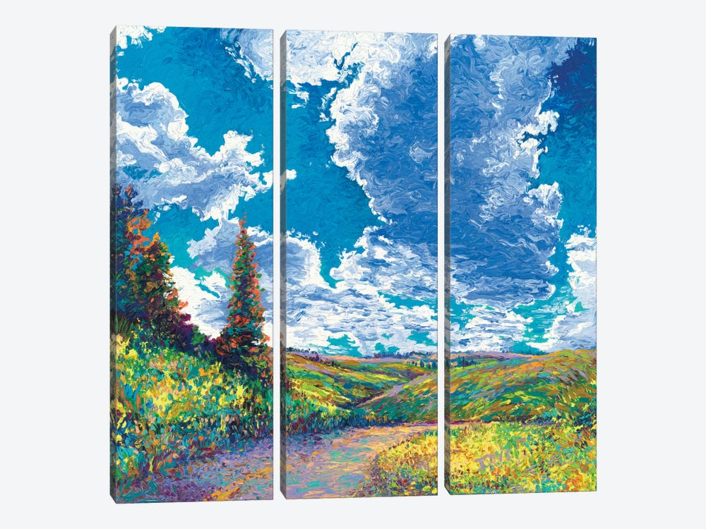 Edge of Canyon Road by Iris Scott 3-piece Canvas Wall Art