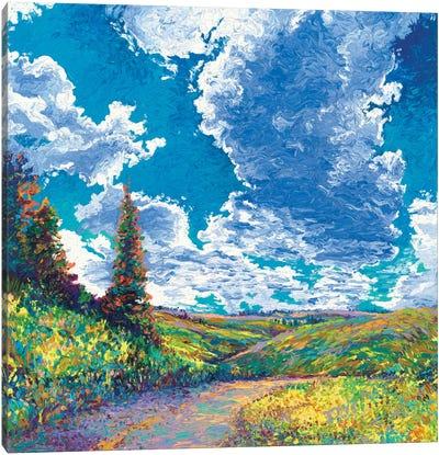 Edge of Canyon Road Canvas Art Print