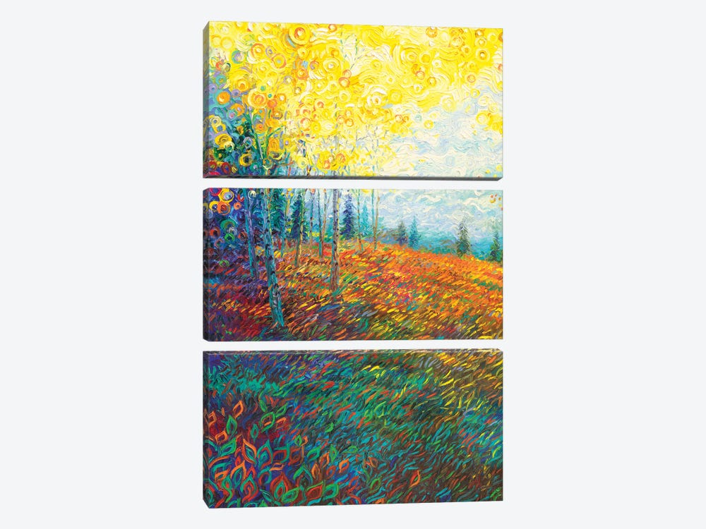 Equilibrium by Iris Scott 3-piece Canvas Art Print