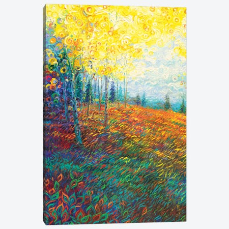Equilibrium 3-Piece Canvas #IRS220} by Iris Scott Canvas Art
