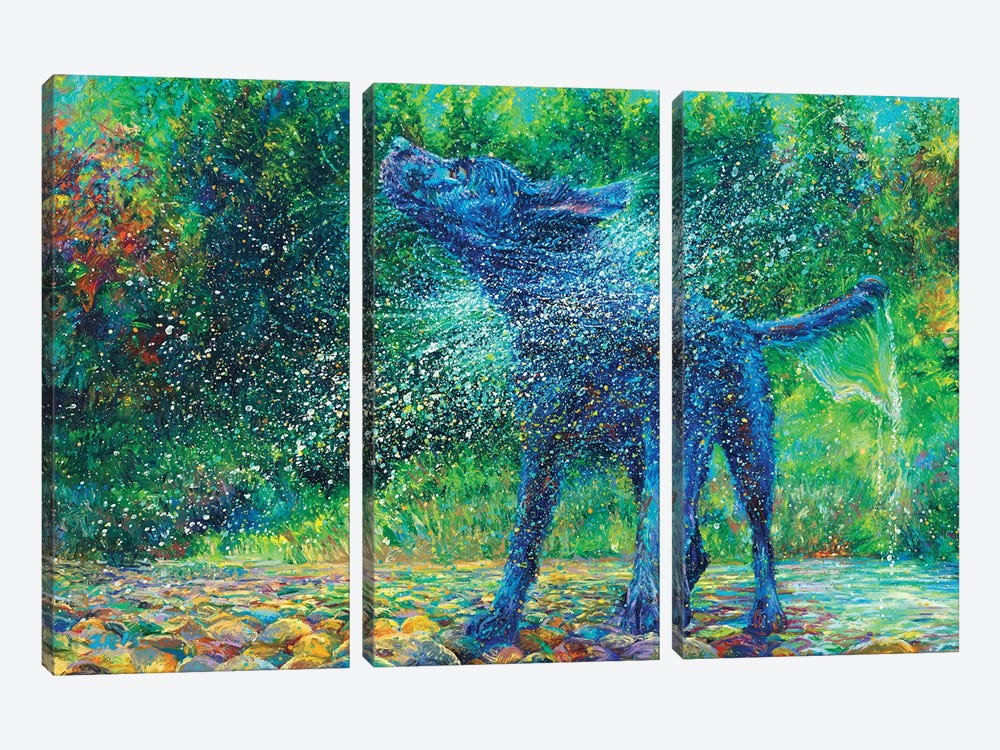 Fishtail Creek by Iris Scott 3-piece Canvas Art