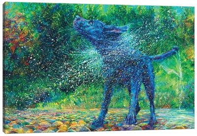 Fishtail Creek Canvas Art Print