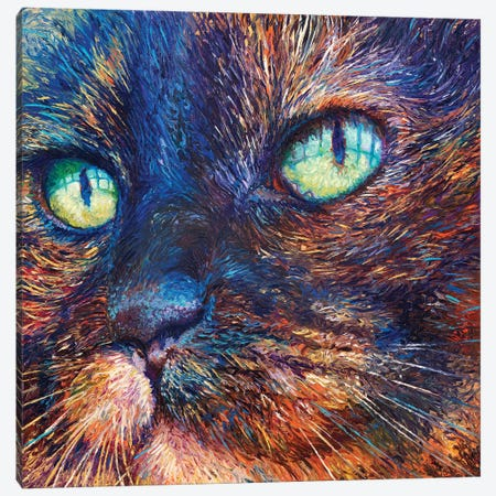 Foxy Canvas Print #IRS222} by Iris Scott Canvas Wall Art