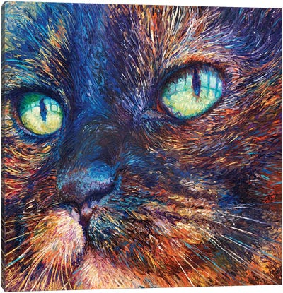 Foxy Canvas Art Print