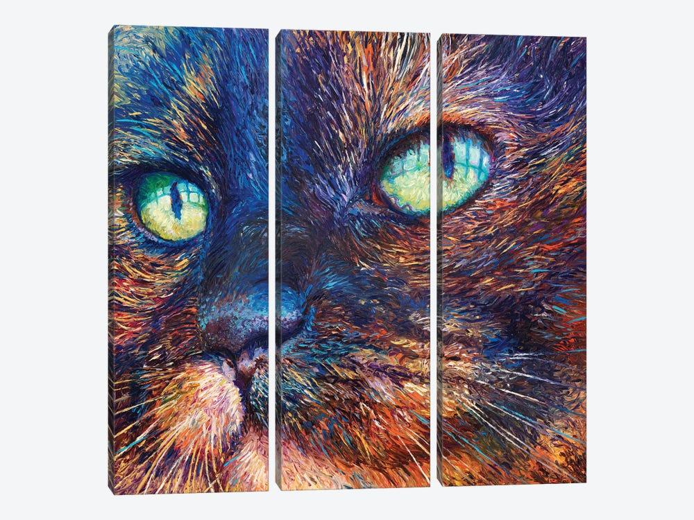Foxy by Iris Scott 3-piece Art Print