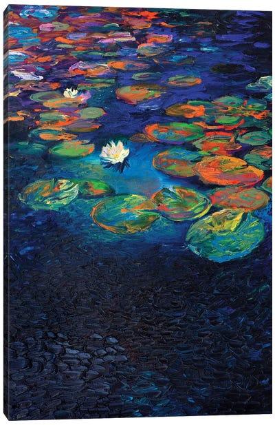 Nymphaea Lotus Canvas Art Print