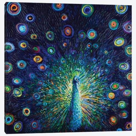 Plumas de Lunas Canvas Print #IRS243} by Iris Scott Canvas Wall Art
