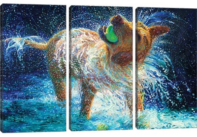 The Juggler Canvas Art Print