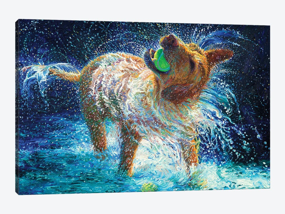 The Juggler by Iris Scott 1-piece Canvas Art Print