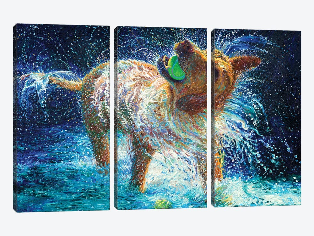 The Juggler by Iris Scott 3-piece Canvas Print