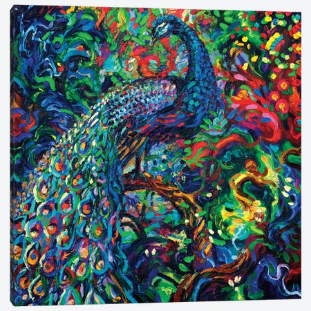 Bird's Eye View Canvas Print #IRS247} by Iris Scott Canvas Art Print