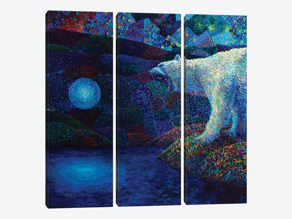 To Melt The Veil by Iris Scott 3-piece Canvas Art