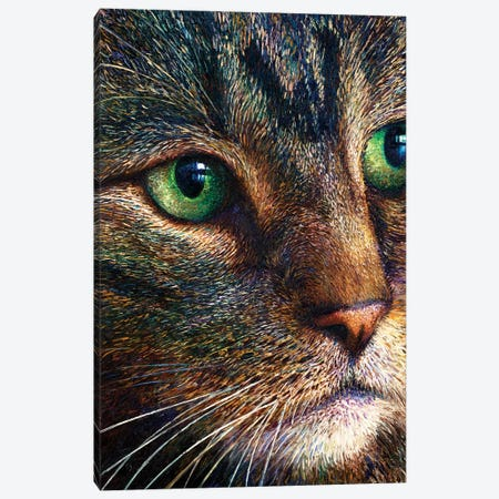 Broccoli Tabby Canvas Print #IRS251} by Iris Scott Art Print