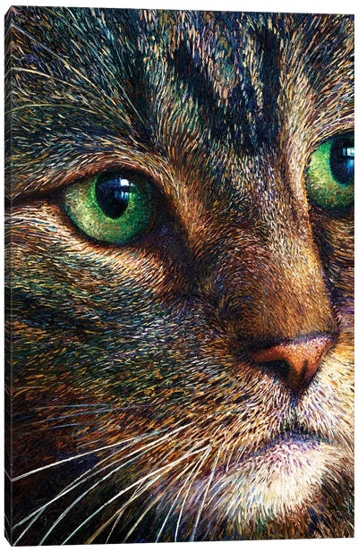 Broccoli Tabby Canvas Art Print