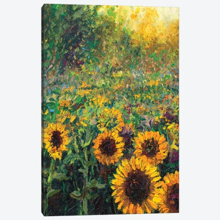 Helios Canvas Print #IRS253} by Iris Scott Canvas Print