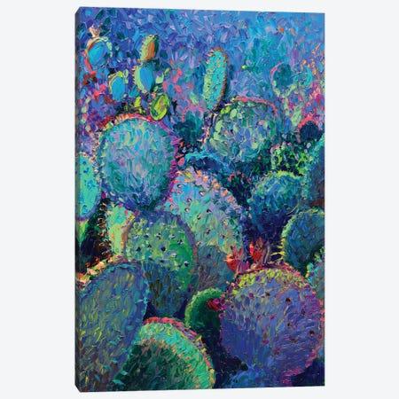 Cactus Refractus Canvas Print #IRS268} by Iris Scott Canvas Art