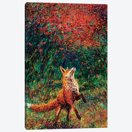 Fox Fire Canvas Print #IRS26} by Iris Scott Canvas Art