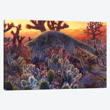 Desert Urchin Canvas Print #IRS272} by Iris Scott Canvas Art Print