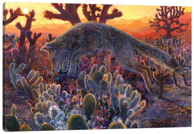 Desert Urchin Canvas Art Print