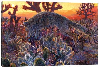 Desert Urchin Canvas Art Print
