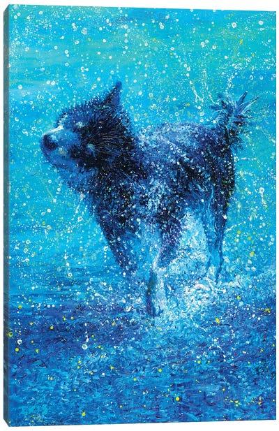 Kookoo Canvas Art Print