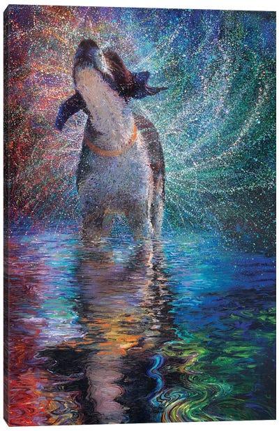 Canis Arcus Canvas Art Print