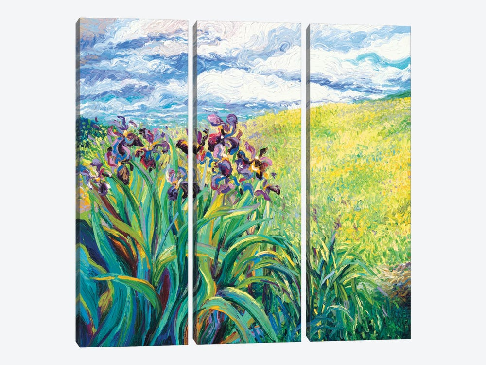 Foxy Triptych Panel I by Iris Scott 3-piece Canvas Art Print