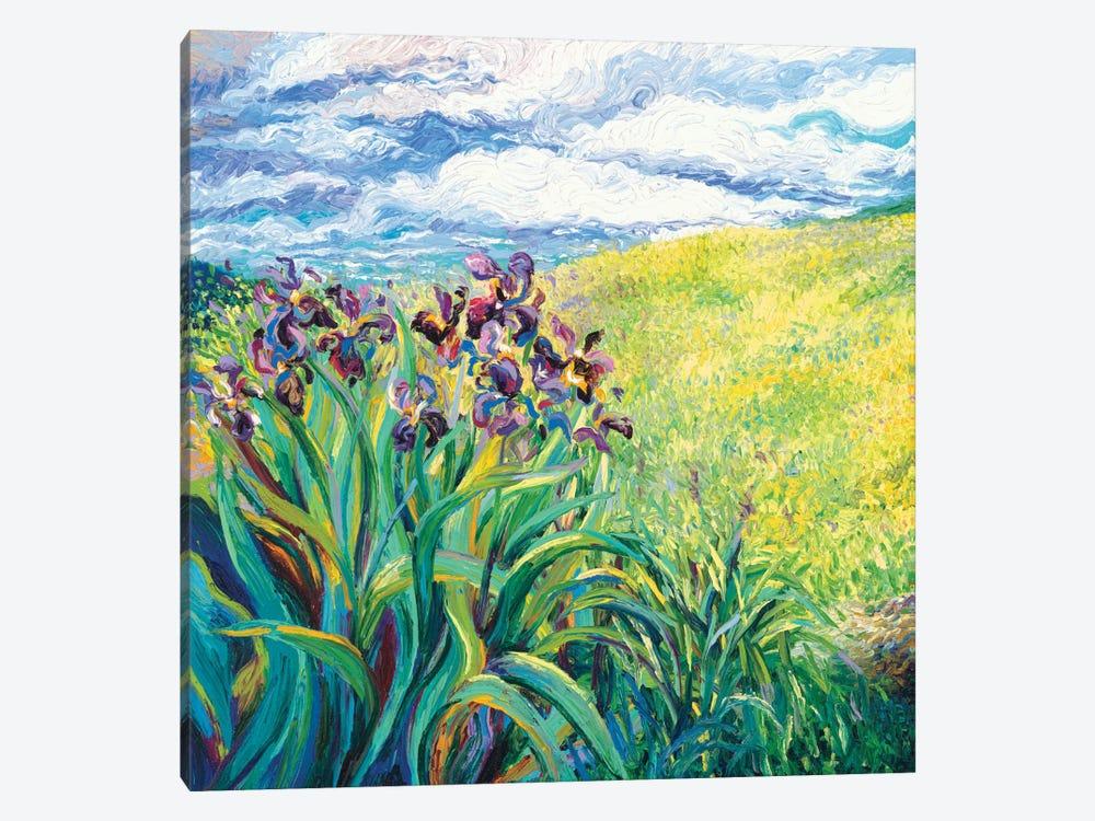 Foxy Triptych Panel I by Iris Scott 1-piece Canvas Print
