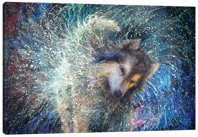 Luna The Sidereal Canvas Art Print