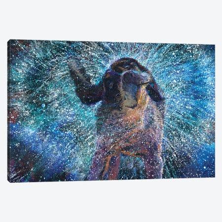 Sectio Divina Canvas Print #IRS305} by Iris Scott Canvas Artwork