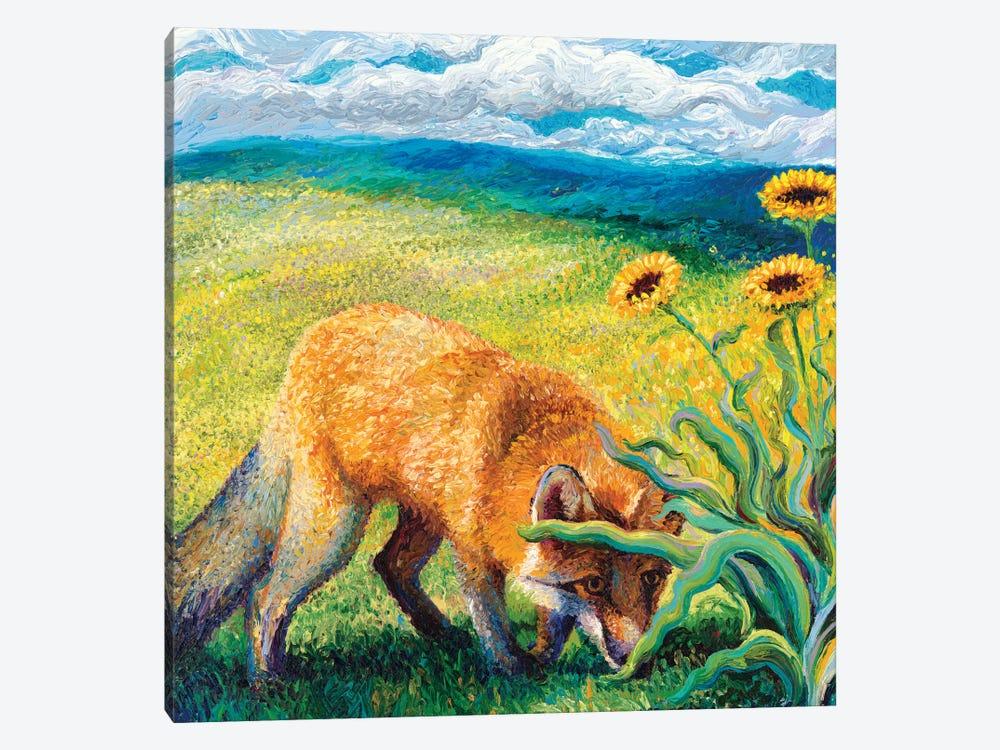 Foxy Triptych Panel II by Iris Scott 1-piece Canvas Artwork