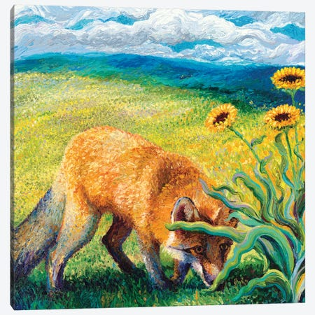 Foxy Triptych Panel II Canvas Print #IRS31} by Iris Scott Canvas Art