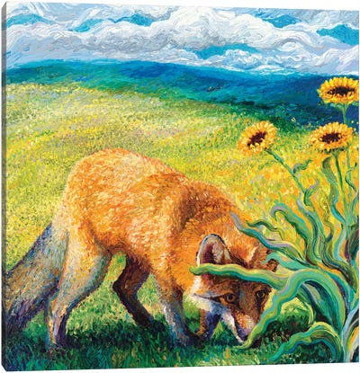 Foxy Triptych Panel II Canvas Art Print