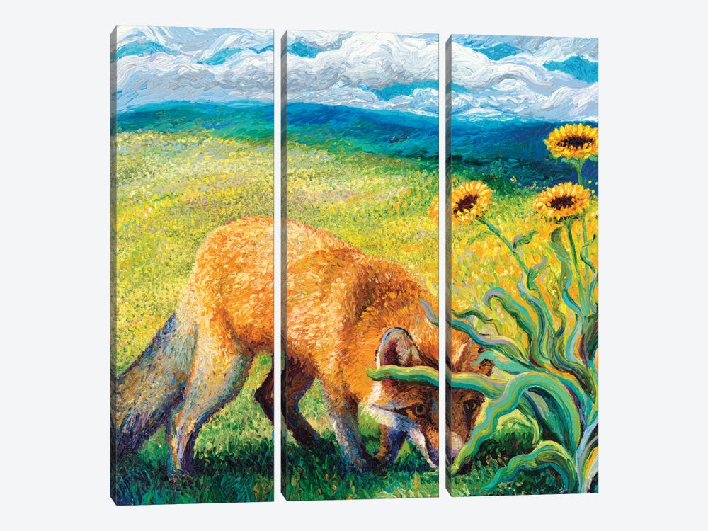 Foxy Triptych Panel II by Iris Scott 3-piece Canvas Wall Art