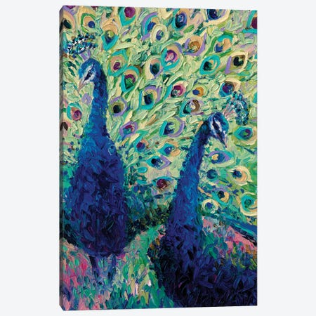 Gemini Peacock Canvas Print #IRS34} by Iris Scott Canvas Art Print