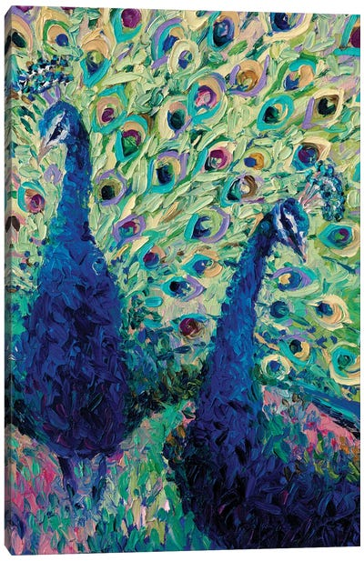 Gemini Peacock Canvas Art Print