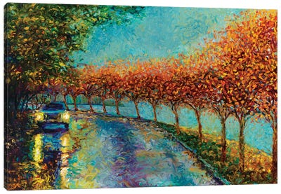 Lake Washington Boulevard Canvas Art Print