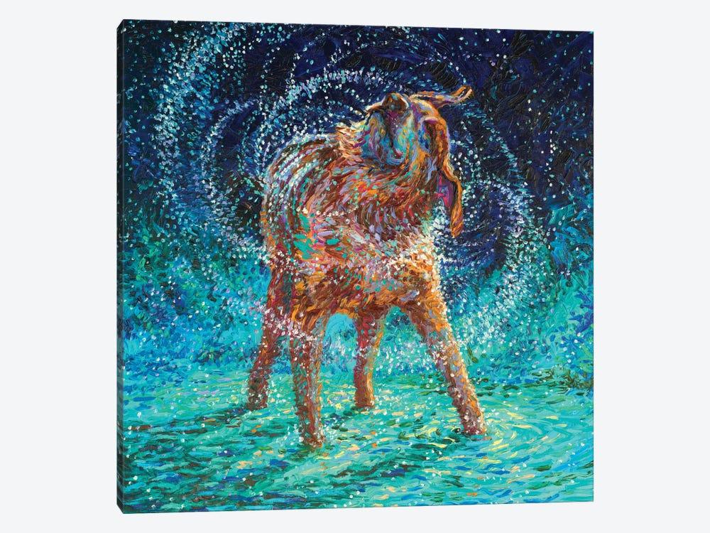 Old Rem by Iris Scott 1-piece Canvas Art