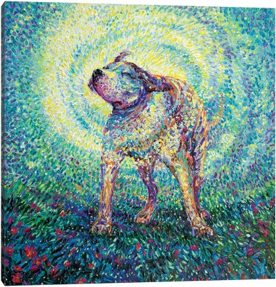 Pitbull Shake Canvas Art Print