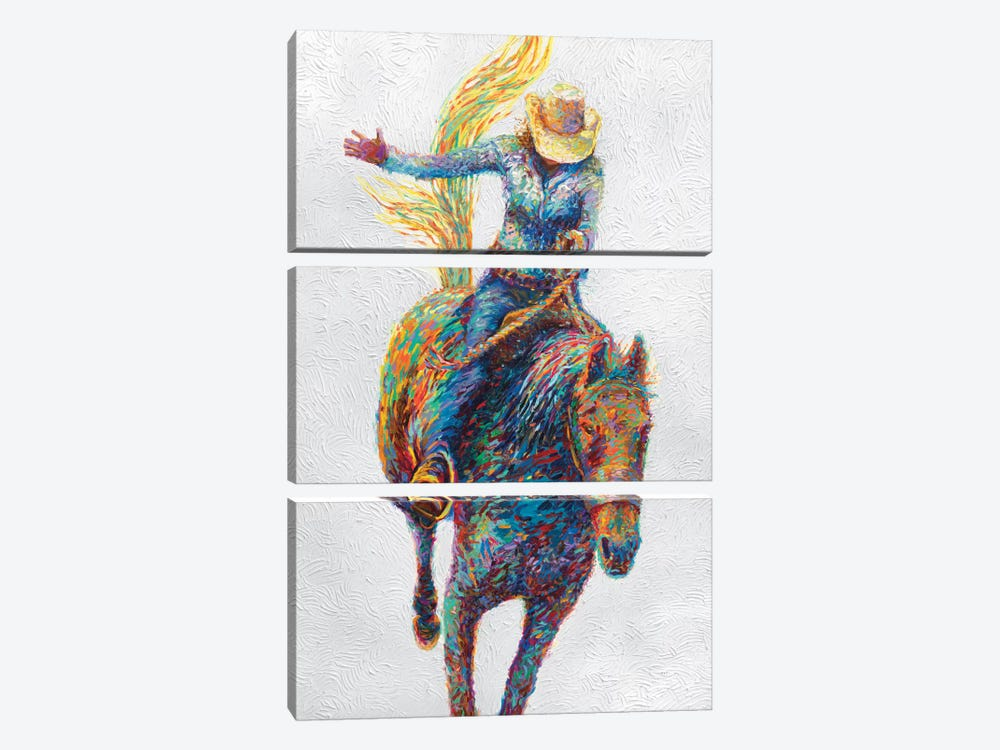 Rodeo by Iris Scott 3-piece Art Print