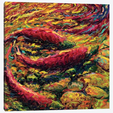 Saturday Salmon Canvas Print #IRS61} by Iris Scott Art Print
