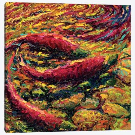 Saturday Salmon Canvas Print #IRS61} by Iris Scott Art Print