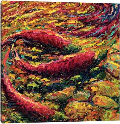 Saturday Salmon Canvas Art Print