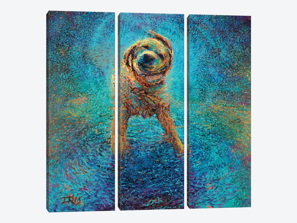Shakin' Off The Blues by Iris Scott 3-piece Canvas Art Print