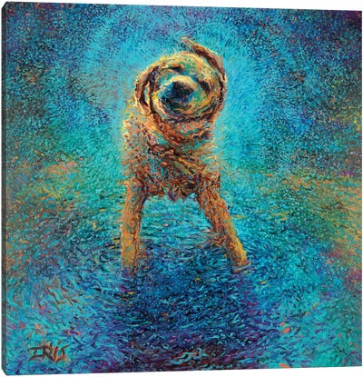 Shakin' Off The Blues Canvas Art Print